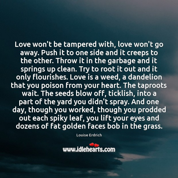 Love won't be tampered with, love won't go away. Push it to Louise Erdrich Picture Quote