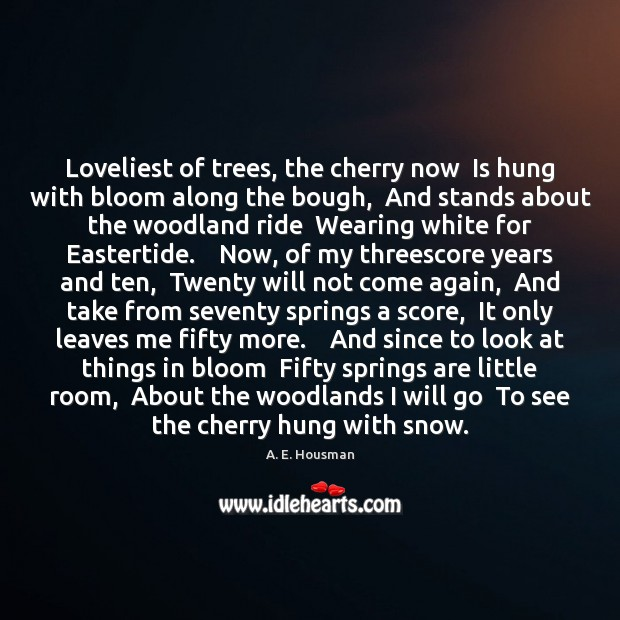 Loveliest of trees, the cherry now  Is hung with bloom along the Image