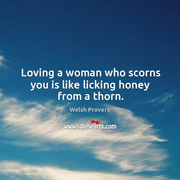 Loving a woman who scorns you is like licking honey from a thorn. Welsh Proverbs Image