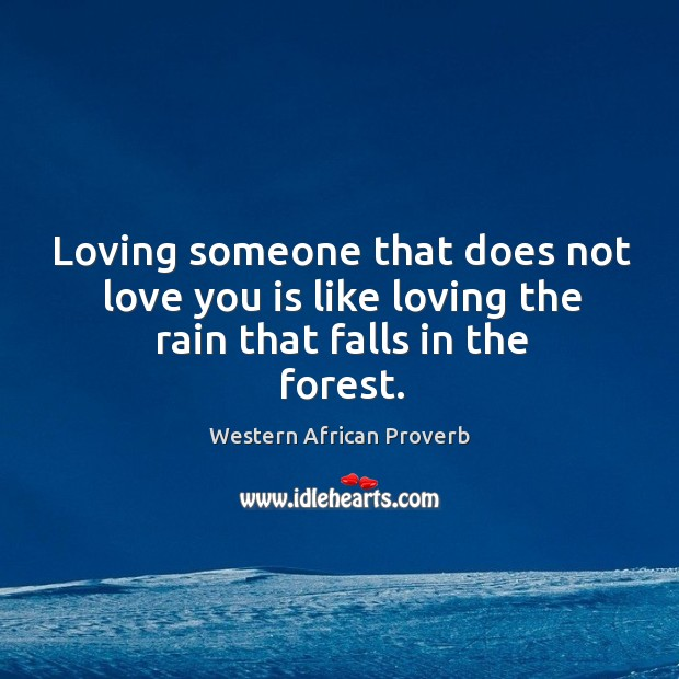 Loving someone that does not love you is like loving the rain that falls in the forest. Western African Proverbs Image