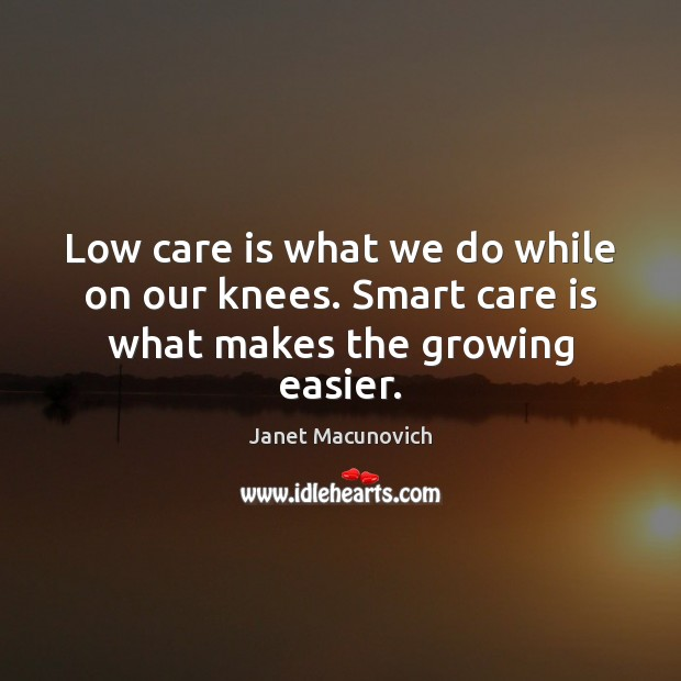 Low care is what we do while on our knees. Smart care is what makes the growing easier. Janet Macunovich Picture Quote