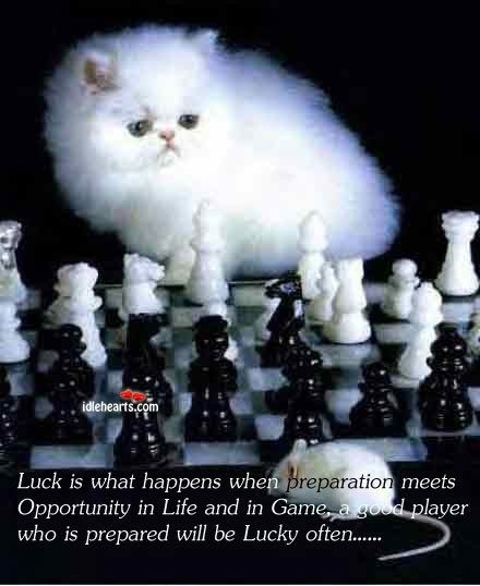 Luck Is What Happens When Preparation Meets Opportunity In…