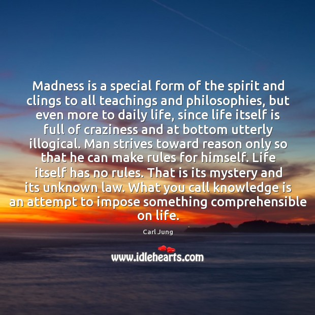 Image, Madness is a special form of the spirit and clings to all