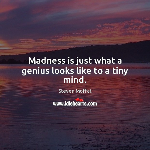 Madness is just what a genius looks like to a tiny mind. Steven Moffat Picture Quote