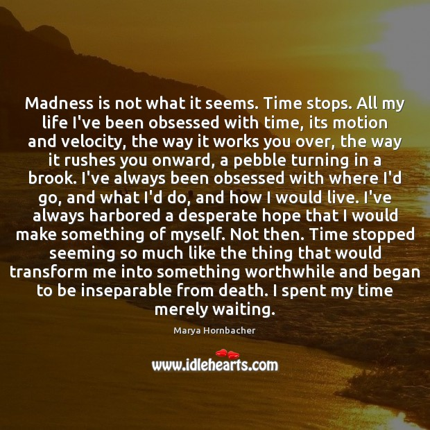 Madness is not what it seems. Time stops. All my life I've Marya Hornbacher Picture Quote