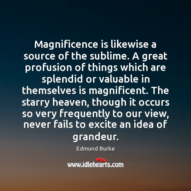 Magnificence is likewise a source of the sublime. A great profusion of Edmund Burke Picture Quote