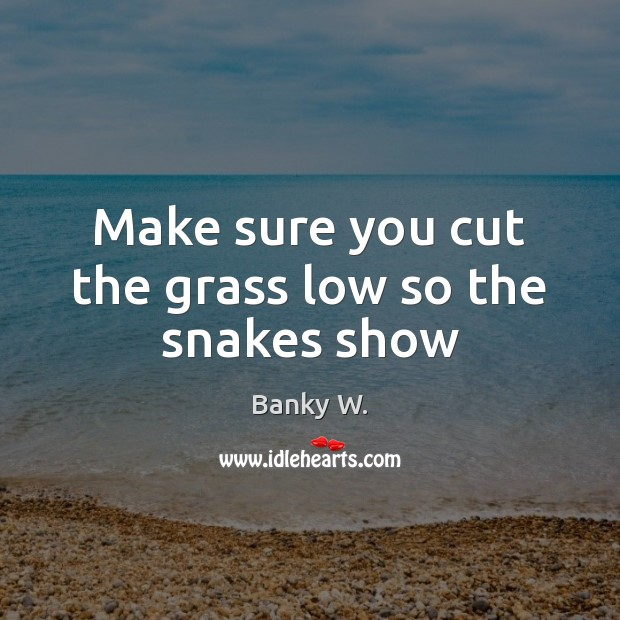 Image, Make sure you cut the grass low so the snakes show