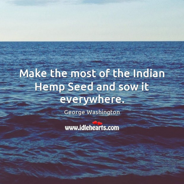 Image, Make the most of the Indian Hemp Seed and sow it everywhere.