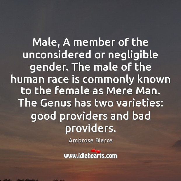 Image, Male, A member of the unconsidered or negligible gender. The male of
