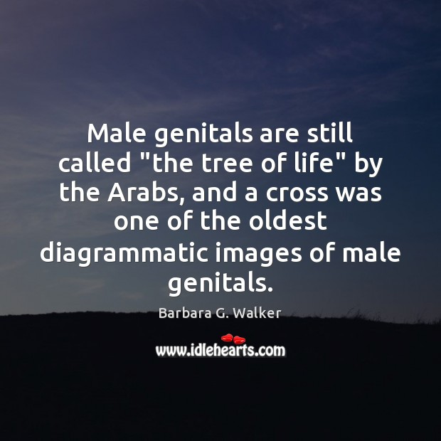 "Image, Male genitals are still called ""the tree of life"" by the Arabs,"