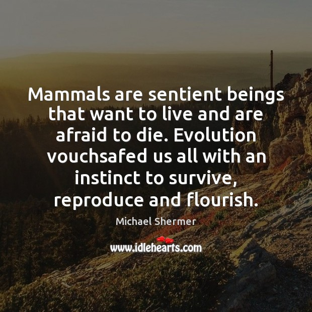 Mammals are sentient beings that want to live and are afraid to Michael Shermer Picture Quote
