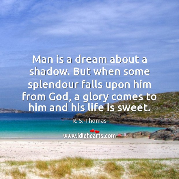 Man is a dream about a shadow. But when some splendour falls Image