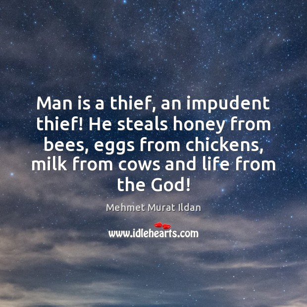 Man is a thief, an impudent thief! He steals honey from bees, Image