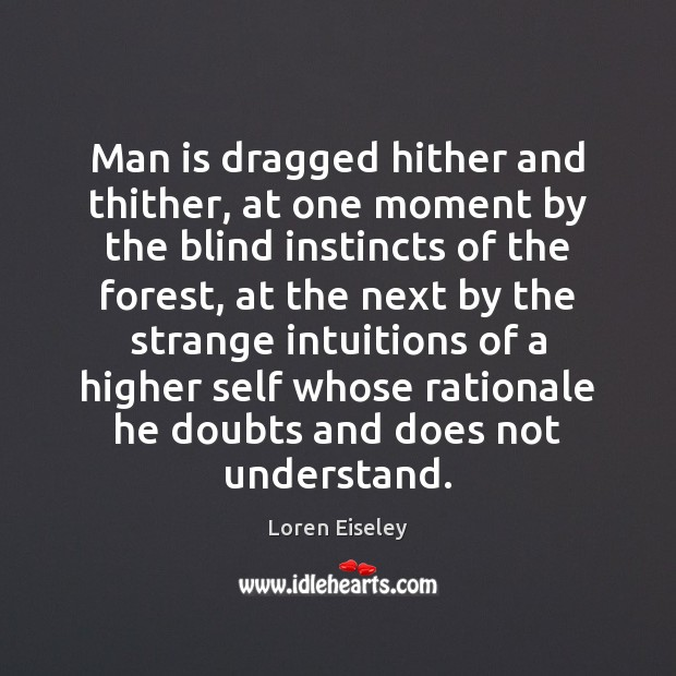 Man is dragged hither and thither, at one moment by the blind Loren Eiseley Picture Quote