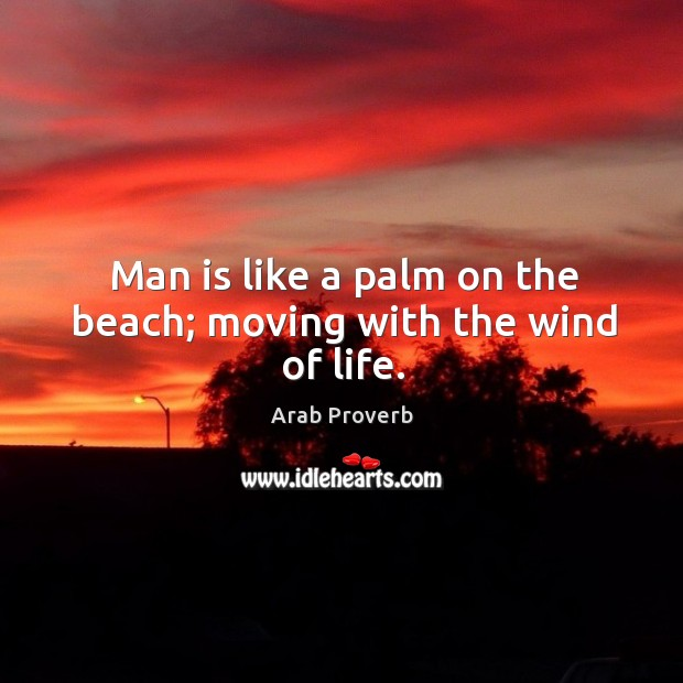 Image, Man is like a palm on the beach; moving with the wind of life.