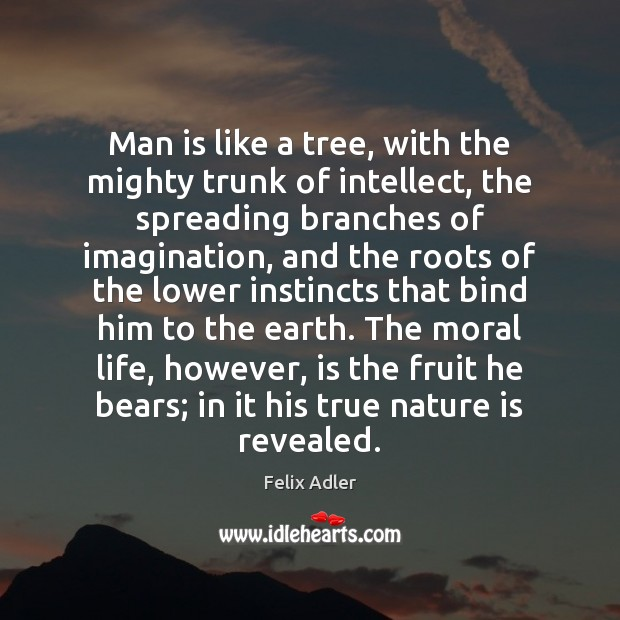 Man is like a tree, with the mighty trunk of intellect, the Felix Adler Picture Quote