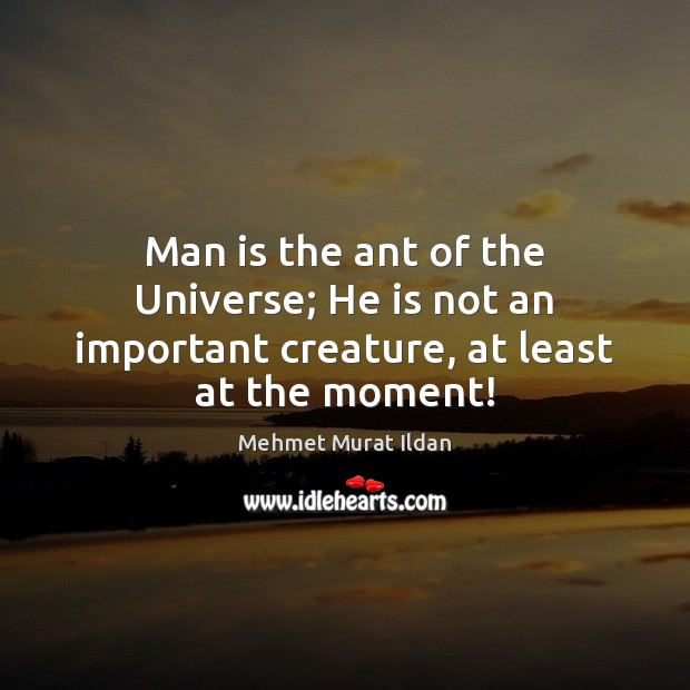 Man is the ant of the Universe; He is not an important creature, at least at the moment! Image