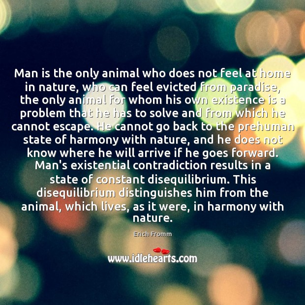 Man is the only animal who does not feel at home in Erich Fromm Picture Quote