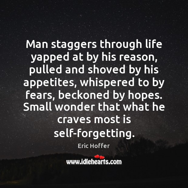 Man staggers through life yapped at by his reason, pulled and shoved Eric Hoffer Picture Quote