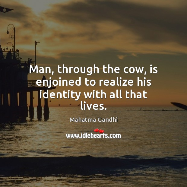Image, Man, through the cow, is enjoined to realize his identity with all that lives.