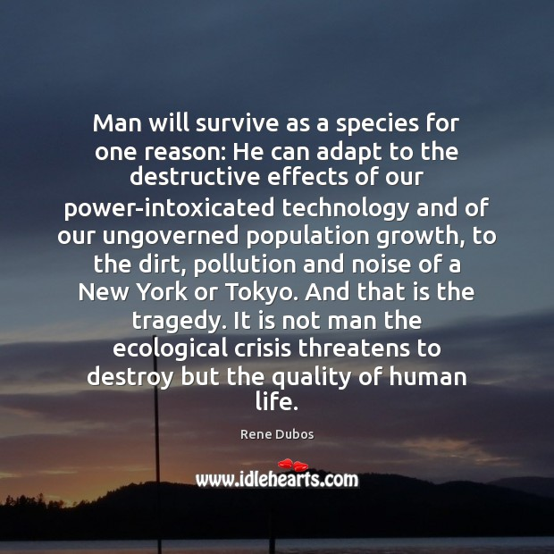 Man will survive as a species for one reason: He can adapt Rene Dubos Picture Quote