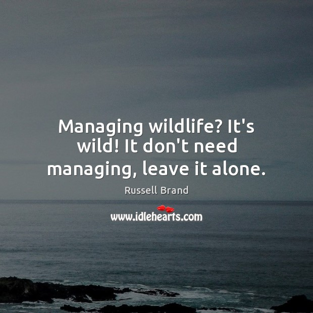 Managing wildlife? It's wild! It don't need managing, leave it alone. Russell Brand Picture Quote