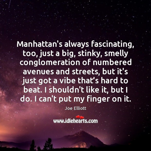 Manhattan's always fascinating, too, just a big, stinky, smelly conglomeration of numbered Joe Elliott Picture Quote