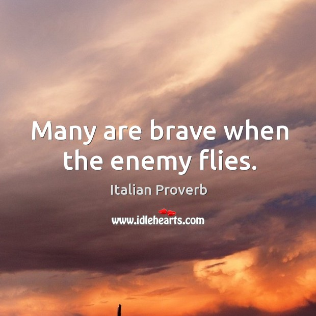 Image, Many are brave when the enemy flies.