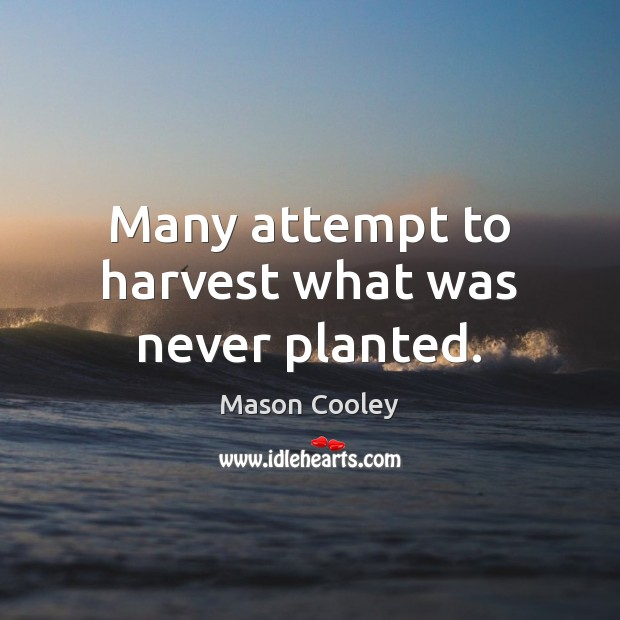 Many attempt to harvest what was never planted. Image