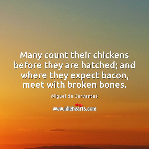 Many count their chickens before they are hatched; and where they expect Expect Quotes Image