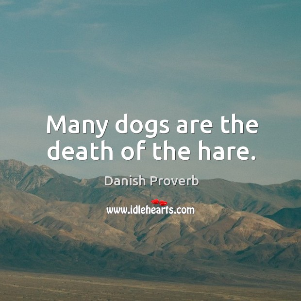Image, Many dogs are the death of the hare.