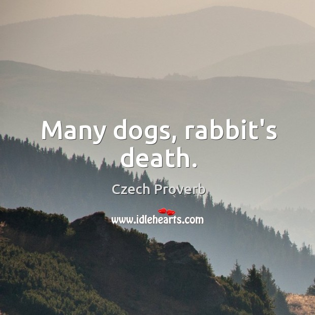 Many dogs, rabbit's death. Czech Proverbs Image
