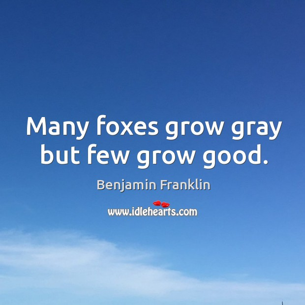 Many foxes grow gray but few grow good. Image