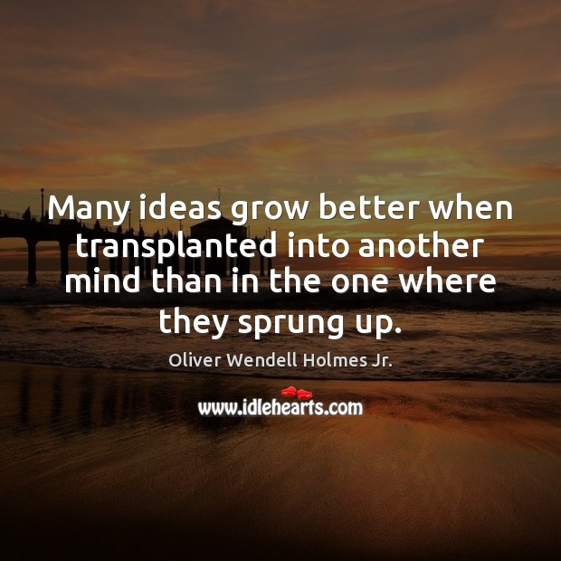 Many ideas grow better when transplanted into another mind than in the Oliver Wendell Holmes Jr. Picture Quote