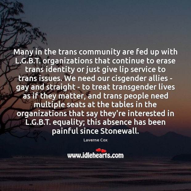 Image, Many in the trans community are fed up with L.G.B.