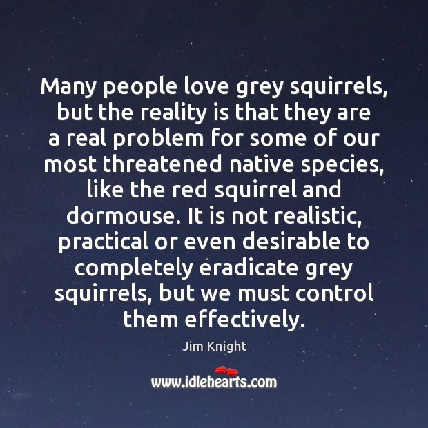 Many people love grey squirrels, but the reality is that they are Image