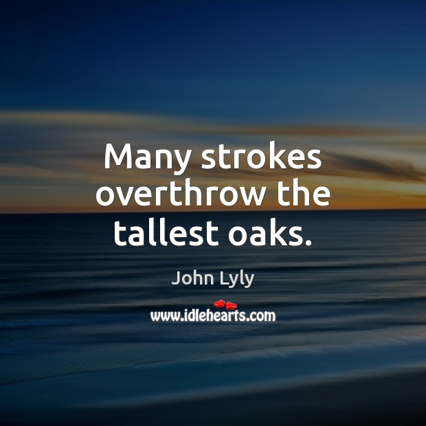 Many strokes overthrow the tallest oaks. John Lyly Picture Quote
