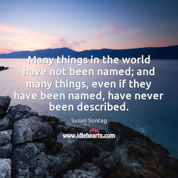 Many things in the world have not been named; and many things, Susan Sontag Picture Quote