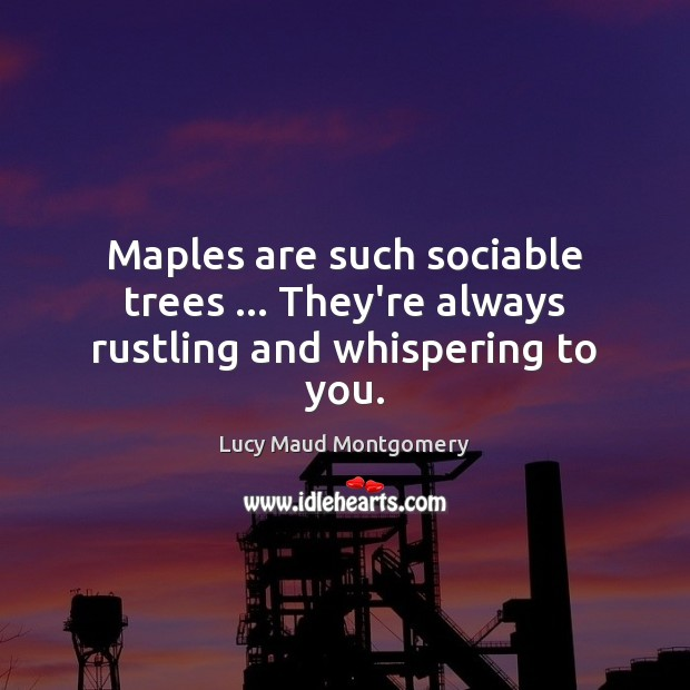 Maples are such sociable trees … They're always rustling and whispering to you. Lucy Maud Montgomery Picture Quote