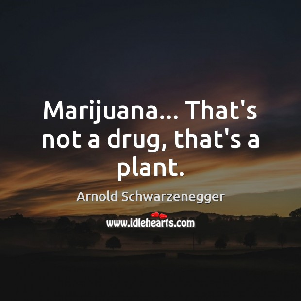 Image, Marijuana… That's not a drug, that's a plant.