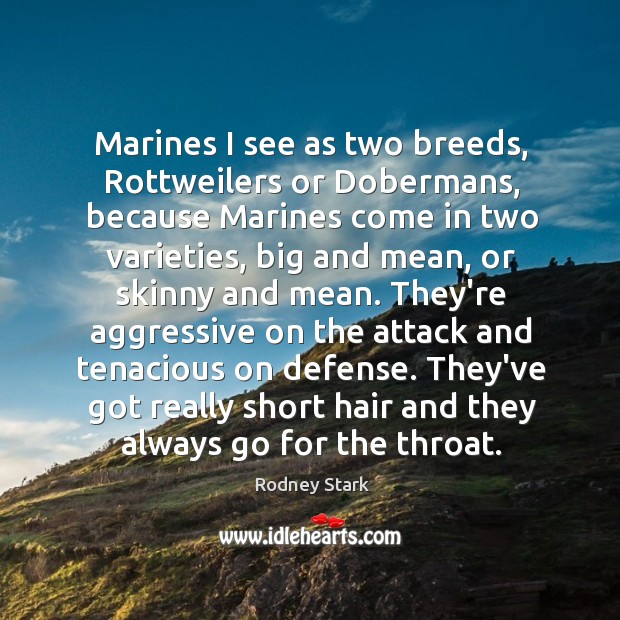 Marines I see as two breeds, Rottweilers or Dobermans, because Marines come Rodney Stark Picture Quote