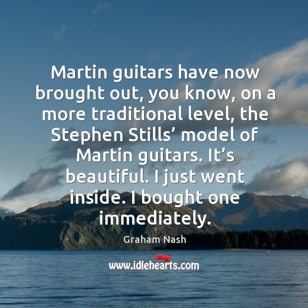 Martin guitars have now brought out, you know, on a more traditional level Image