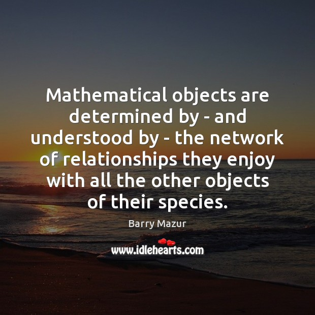 Image, Mathematical objects are determined by – and understood by – the network