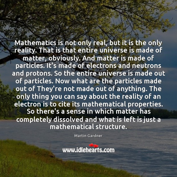 Mathematics is not only real, but it is the only reality. That Martin Gardner Picture Quote