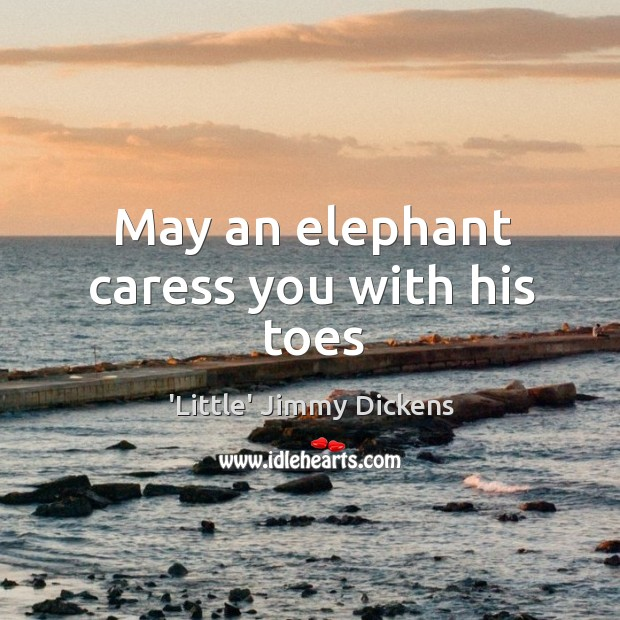 Image, May an elephant caress you with his toes