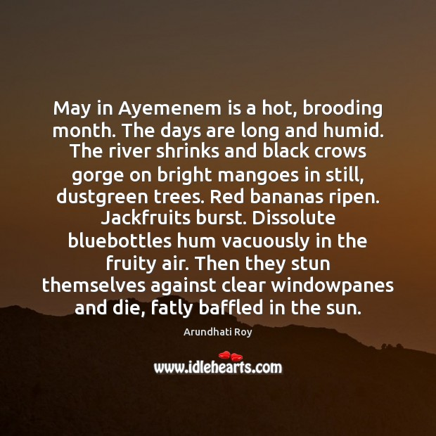May in Ayemenem is a hot, brooding month. The days are long Arundhati Roy Picture Quote