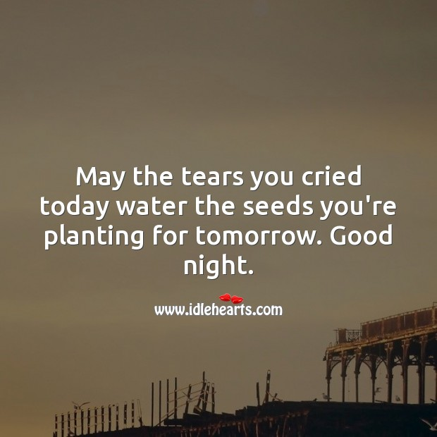 May the tears you cried today water the seeds you're planting for tomorrow. Water Quotes Image