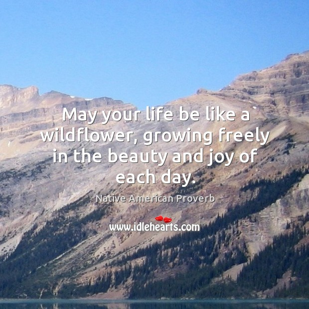 May your life be like a wildflower, growing freely in the beauty and joy of each day. Native American Proverbs Image