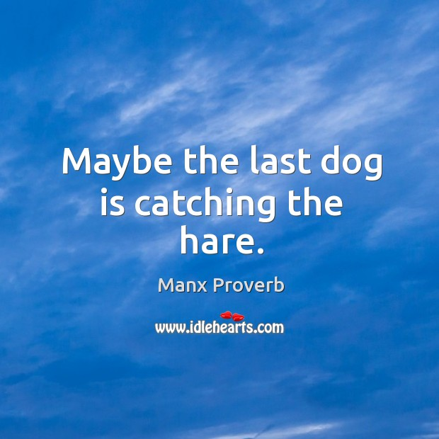 Maybe the last dog is catching the hare. Manx Proverbs Image