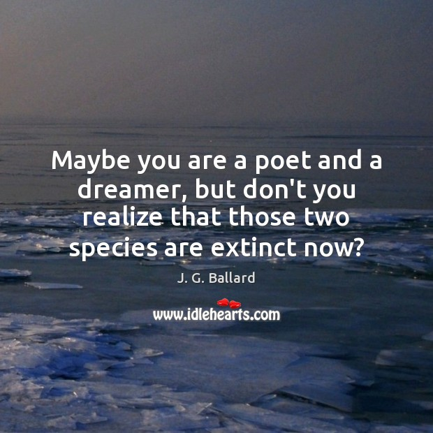 Maybe you are a poet and a dreamer, but don't you realize Image
